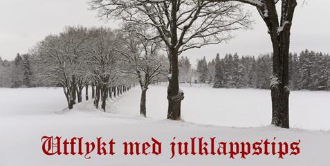 Utflykt med julklappstips i Nykvarn