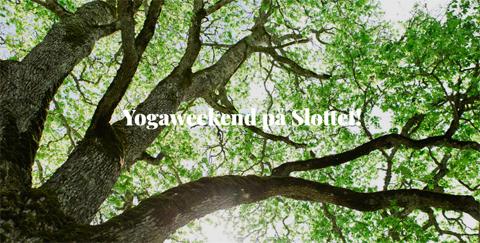 Yogaweekend på Vidbynäs Gård Nykvarn Sörmland