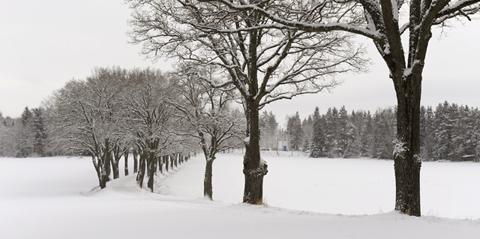 Afternoon Tea på Taxinge Slott Nykvarn Sörmland
